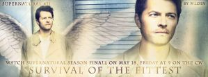 Survival of the Fittest (Banner for timeline # 2) by Nadin7Angel