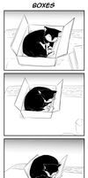 ToaG: Boxes by TriaElf9