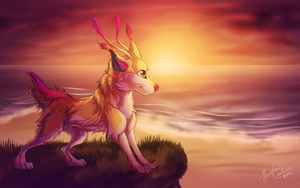 Bailey at the sea by Cederin