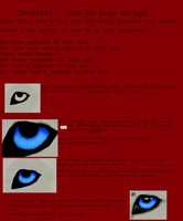 Tutorial - Draw Wolf eye by silent33