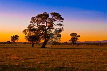 Countryside by welovephotography201