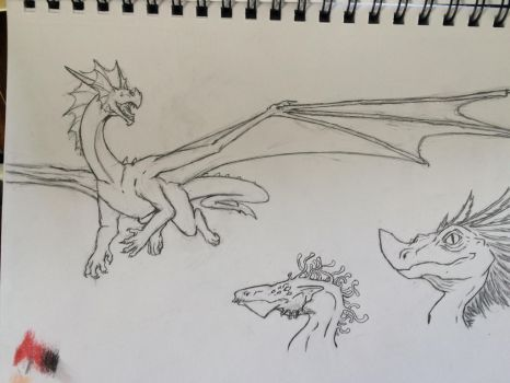 Dragon Doodle Page  by ThunderWolf3