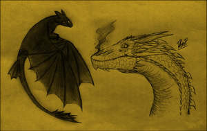 Crazy Crossover : Smaug VS Night Fury by TheJuras