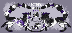 Rebel (Cloudeater) 2018 by Lif0rneir0a
