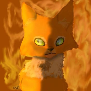 Fireheart [warrior cats draw] by TheSpyinx