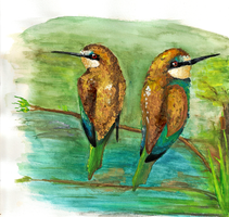 Bee Eaters by SnowyStuff