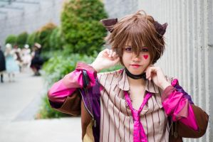 Cheshire Cat Cosplay by raveka