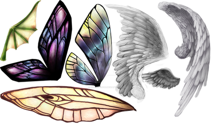 Wings of different colours by RomanticFae