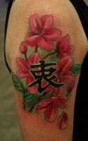 Kanji and Cherry Blossoms by Norbert Halasz by DublinInk