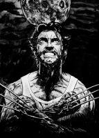 Wolverine by FDupain