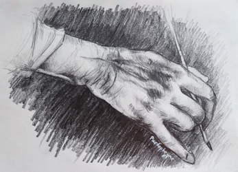 Hand study 2 by Paedophryne
