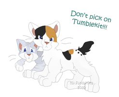 Tumblekit and Crowkit by funlakota