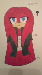 New Sonic Style Emily the Echidna by ShadAmyfangirl129