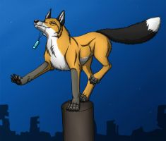 Fox parkour by BullTerrierKa