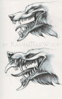 heads-sketch[2] by RavenMadwolf
