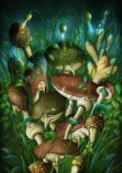 Shrooms by jeshannon