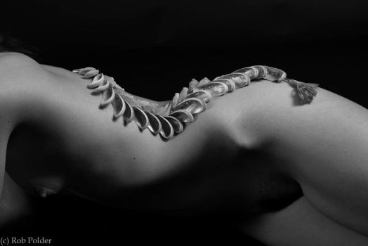Shell Nude B+w by robpolder