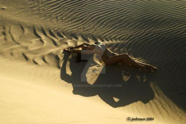 In the Dune by Vivenrican