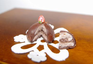 Chocolate layered dome cake - Miniature by Nassae