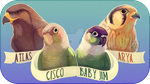 Bird Group - Commission