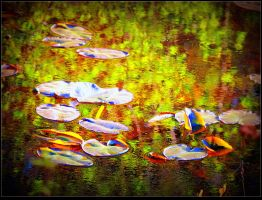 Waterlilies on reflected water by surrealistic-gloom