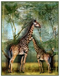 Giraffes by buddygirlgreetings