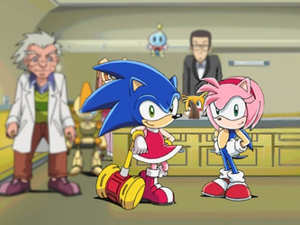 Sonic and Amy are happy because of a head swap! by SwappyShira
