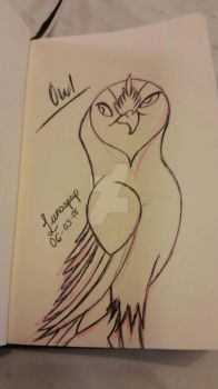 Quick owl sketch by Lunaspup