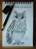Owl by JustEyra