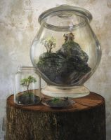 Terrarium by curious3d
