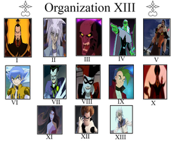 My Organization XIII Meme by MarioFanProductions