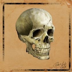 Skull Project2a by petro66