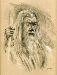Gandalf Lord of the Rings Drawing by Stungeon