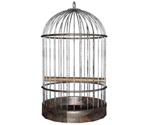 side birdcage cage png by madetobeunique