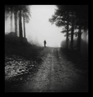 Go all the way... into the fog by Vrohi