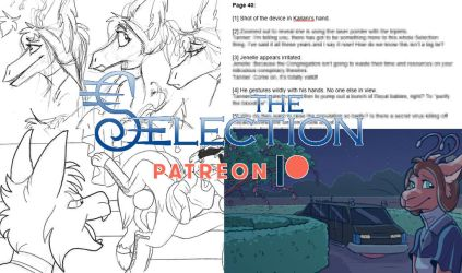 The Selection Patreon JUNE '18 by AlfaFilly