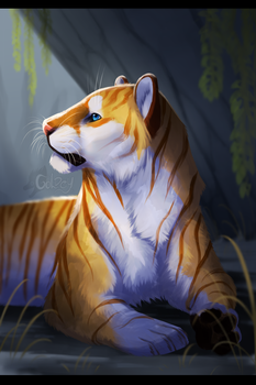 Golden Tiger by GoldenTigerDragon