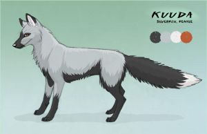 Kuuda ref sheet by Kuuda