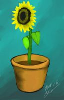 Sunflower in oil by RoninH5X