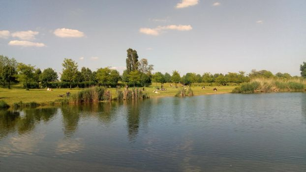 Lake in the park by PaolaCamberti