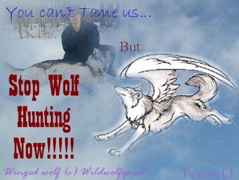 End the wolf hunt save