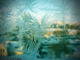 Frost on the window by ArthurGautama