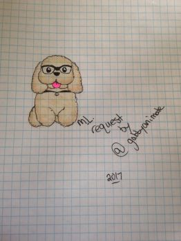 Toy poodle  by NexiusxHeartsx