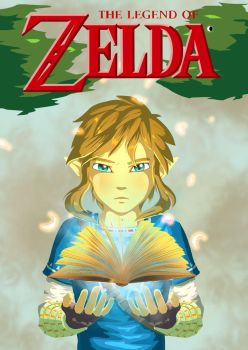 Zelda U fan cover art by heey1888