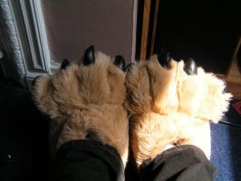 Paw slippers 3 by wishfoot88