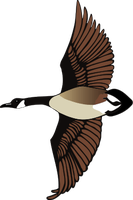 Canadian Goose flying T by Lust0fADeeperPain