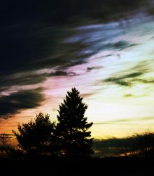 Fading Color by imperfectclone19
