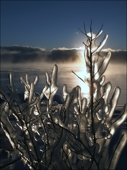 Cold Light of Day by wb-skinner