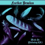 Feather Brushes by dollieflesh-stock