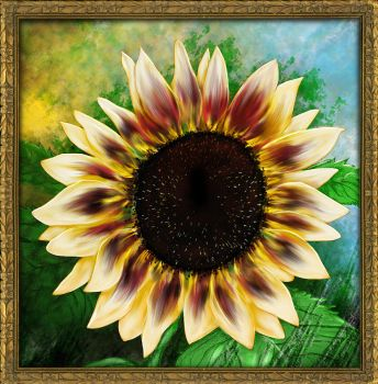 Sunflower by Alena-48